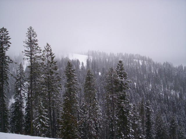 The Glades in West Bowl